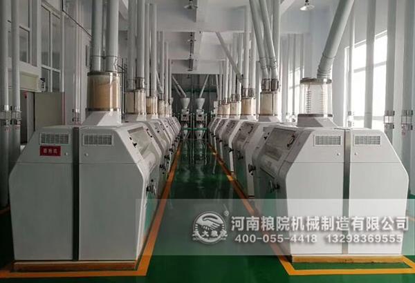 日常200吨的面粉机加工设备